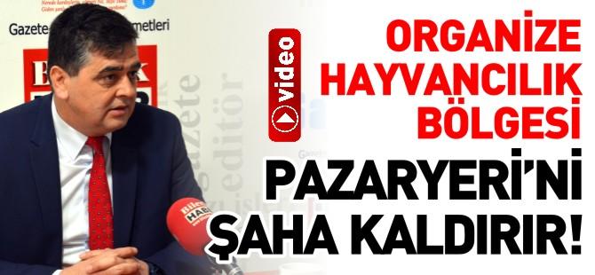 ORGANİZE HAYVANCILIK BÖLGESİ PAZARYERİ'Nİ ŞAHA KALDIRIR