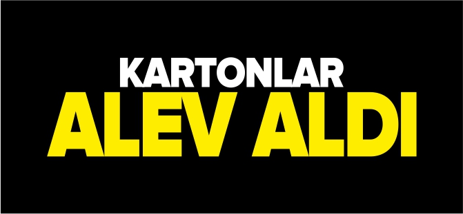 KARTONLAR ALEV ALDI