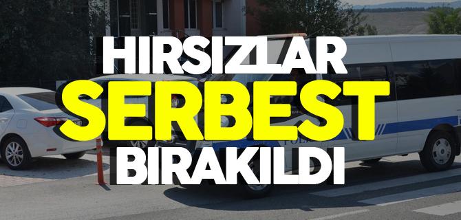 HIRSIZLAR SERBEST BIRAKILDI