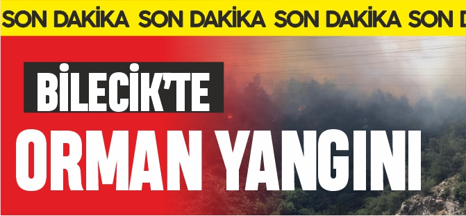BİLECİK'TE ORMAN YANGINI !