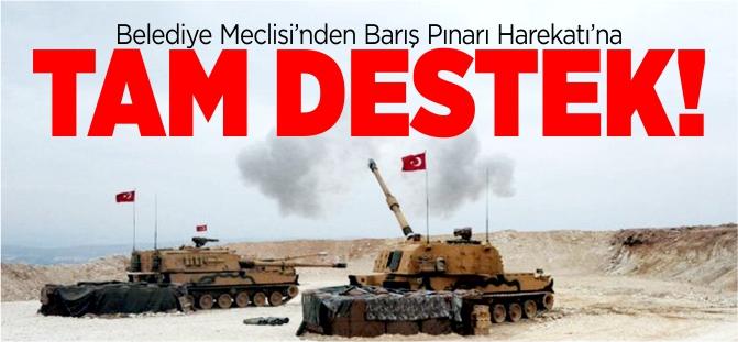 MECLİSTEN 'BARIŞ PINARI HAREKATI'NA DESTEK