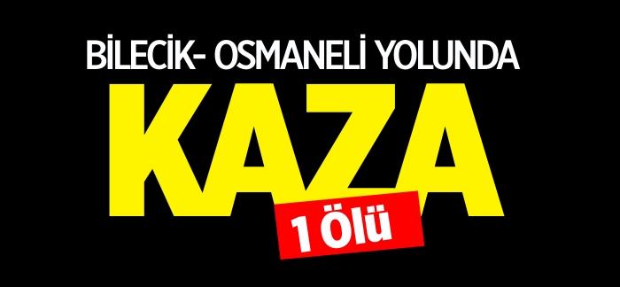 BİLECİK - OSMANELİ YOLUNDA KAZA