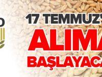 TMO 17 TEMMUZ'DA ALIMA BAŞLAYACAK
