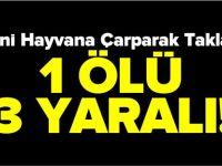 OTOMOBİL YABANİ HAYVANA ÇARPTI 1 ÖLÜ 3 YARALI