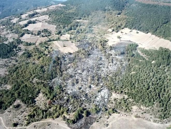 6-hektar-alan-kule-dondu3.jpg