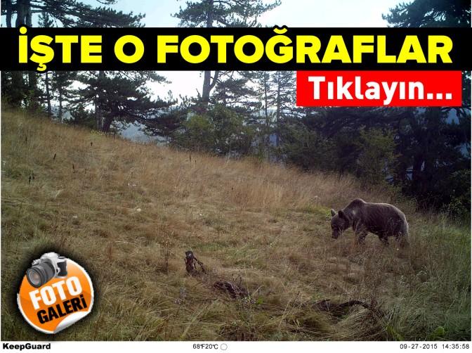 foto-galeri1.jpg